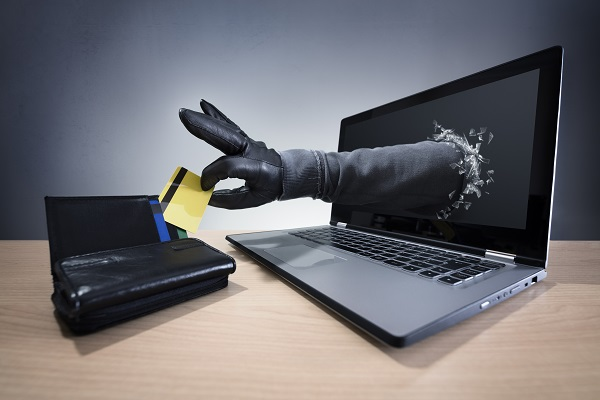 How Online Businesses Combat Fraud